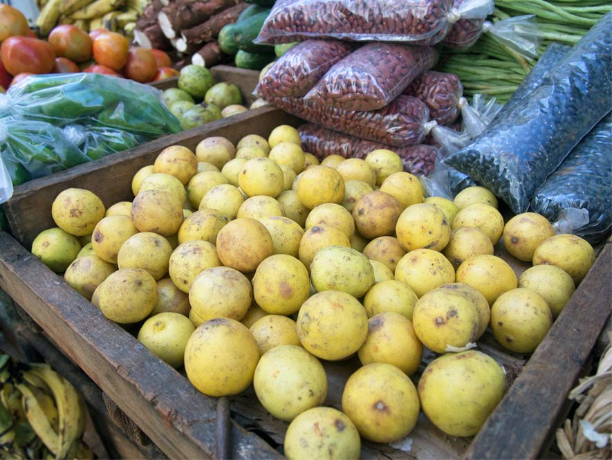 Fruit displayed at a local food market in Havana